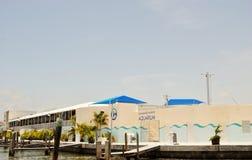 Clearwater marin- mitt Fotografering för Bildbyråer