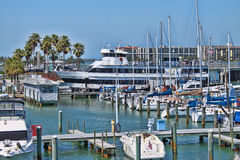 Clearwater marina Royaltyfria Foton