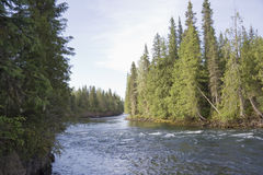 Clearwater River Stock Image