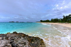 Clearwater strand - Bermuda Royaltyfria Foton