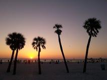 Clearwater-Strand - Florida Stockbild