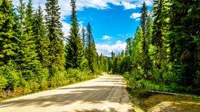 Clearwater-Tal-Straße in Wells Gray Provincial Park lizenzfreies stockbild