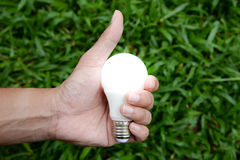 CLED Bulb with lighting Royalty Free Stock Photo