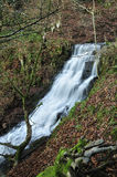 Cleddon Falls Royalty Free Stock Photo