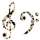 clefs grunge στοκ εικόνες
