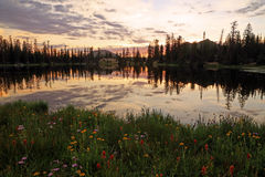 Clegg Lake with dusk sky. Stock Images
