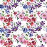 Clematis bouquet floral botanical flowers. Watercolor background illustration set. Seamless background pattern. stock illustration