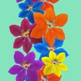 Clematis Textura inconsútil del modelo de flores Fondo floral Fotos de archivo libres de regalías