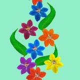 Clematis Textura inconsútil del modelo de flores Fondo floral Imágenes de archivo libres de regalías