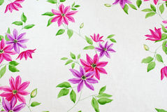 Clematis trail Royalty Free Stock Photo