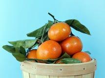 clementina Immagini Stock