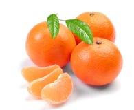 Clementina com segmentos Imagem de Stock Royalty Free