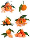 Clementina com segmentos Fotos de Stock Royalty Free
