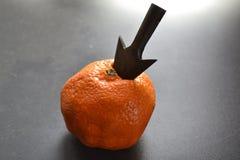 Clementina e seta Foto de Stock Royalty Free