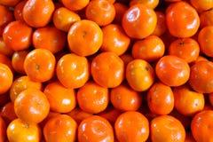 Clementina fresca Fotografia Stock Libera da Diritti