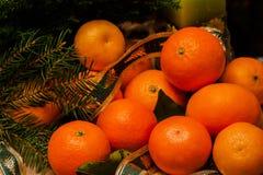 Clementina fresca de la mandarina con las hojas y abeto en fondo de madera oscuro La Navidad, concepto del Año Nuevo Fotografía de archivo