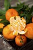 Clementina frescas inteiras e uma descascada Fotos de Stock