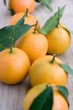 Clementinas fotografía de archivo