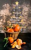 Clementinas en el fondo del árbol de navidad imagenes de archivo