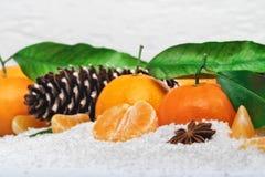 Clementinas frescas en nieve Imagen de archivo libre de regalías