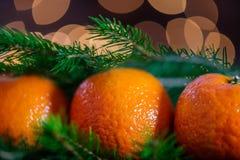 Clementinas o mandarinas frescas, luces y árbol Branc de Navidad de Navidad Imagenes de archivo