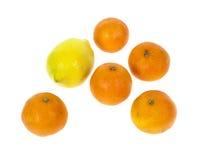 clementine цитруса Стоковое Фото
