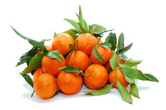 Clementine. Pile isolated on white royalty free stock image