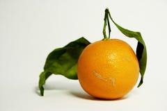 Clementine Royalty-vrije Stock Fotografie