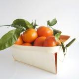 clementine Fotografia Stock Libera da Diritti