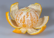 Clementine Close Up Pealed imagens de stock royalty free