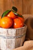 Clementine Crop Stock Photos
