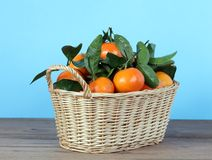 Clementine Royalty Free Stock Image