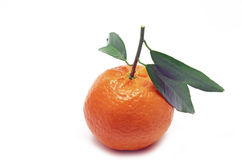 Clementine with green leaves Royalty Free Stock Photo