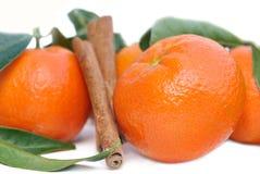 Clementine i cynamon fotografia stock