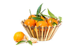 Clementine   isolated. Isolated clementine  with leaves on white background Royalty Free Stock Images
