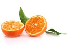 Clementine Royalty Free Stock Photos