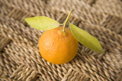 Clementine with leaves Royalty Free Stock Photos