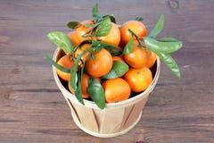 Clementine mandarin fruit Stock Image