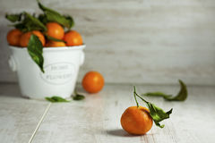 Clementine mandarines with green leaves on gray wooden backgroun. D Stock Images