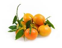 Clementine met bladeren Stock Afbeeldingen