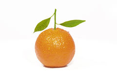 Clementine orange. Fresh clementine orange with water droplets Stock Image