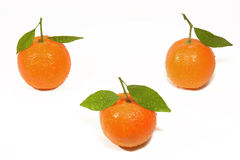Clementine orange with droplets. Clementine orange on water droplets Royalty Free Stock Photos