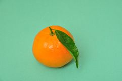 Clementine orange Stock Photography