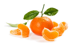 Clementine or Tangerine. Royalty Free Stock Photos