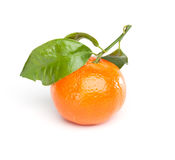 Clementine (tangerine) with leaf Stock Photography