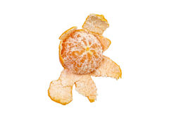 Clementine on white background Royalty Free Stock Photography
