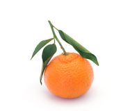Clementines Royalty Free Stock Photo
