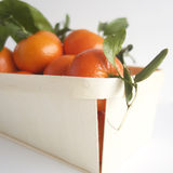 clementines Royaltyfria Foton