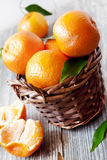 Clementines Basket Stock Photography