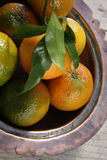 Clementines in a bowl. Freshly picked clementines in a copper bowl Royalty Free Stock Images